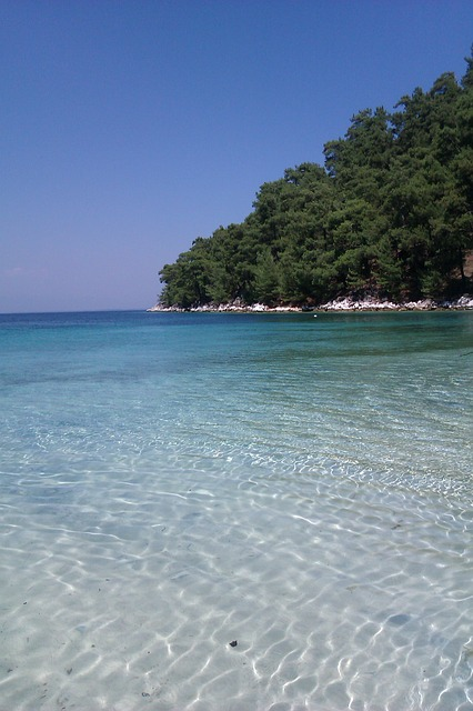 tasos plaze