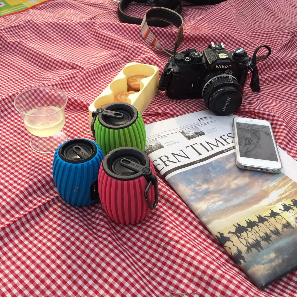 piknik, prolecni piknik, vikend, hrana, pice, prijatelji, park, cebe